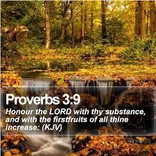 Proverbs 3, 9, 10 Scripture Memory Verse (8/17/18)