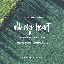 Psalm 119:10 Scripture Memory Verse (10.26.18)